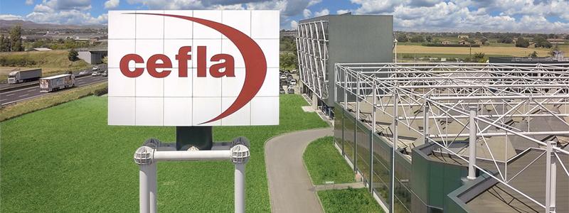 Компания  CEFLA — экскурс в историю